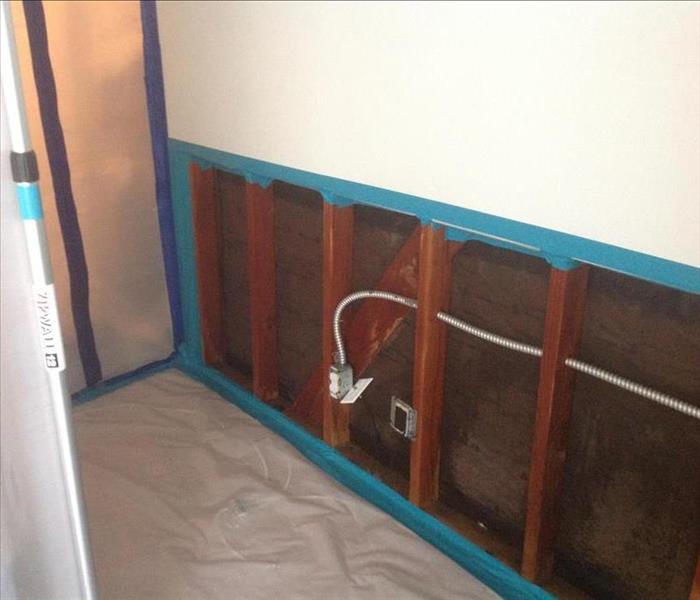 Mold; contain it, remove water damaged nonstructural building materials, dry and detail clean.